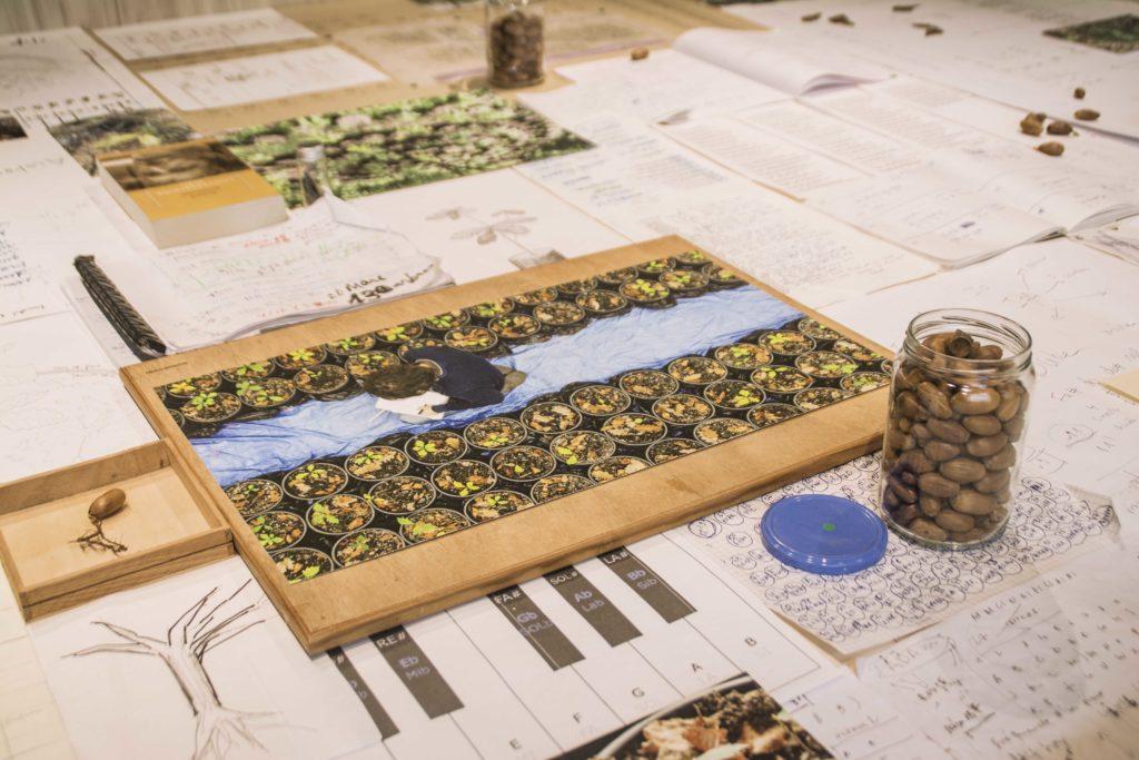 """Vue d'exposition """"Concert pour une nouvelle forêt"""", Guillaume Barth 2019. © Fondation Bullukian - PR"""
